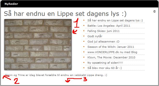 vonderlippe.dk/images/nyhedspanelet.jpg